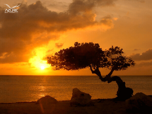 sunset at the beach in property Aruba